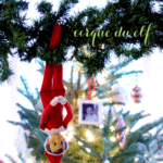 Elf on the Shelf Ideas ~ Day 6 ~ Cirque du Elf