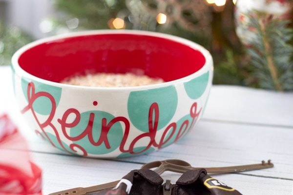 Elf Brunch Party Ideas from AmysPartyIdeas.com | Reindeer Food Bowl from Coton-Colors.com | #cotoncolors #elfreturnweek