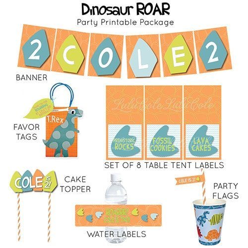Dinosaur Birthday Party Supplies - Printable Personalized Party Package