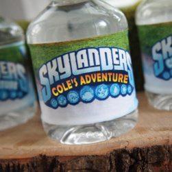 Skylanders Water Bottle Labels