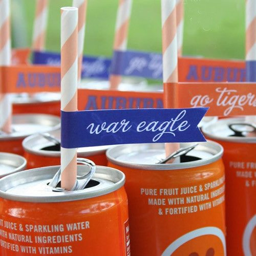 Auburn Football Tailgating Party Flags #wareagletailgating