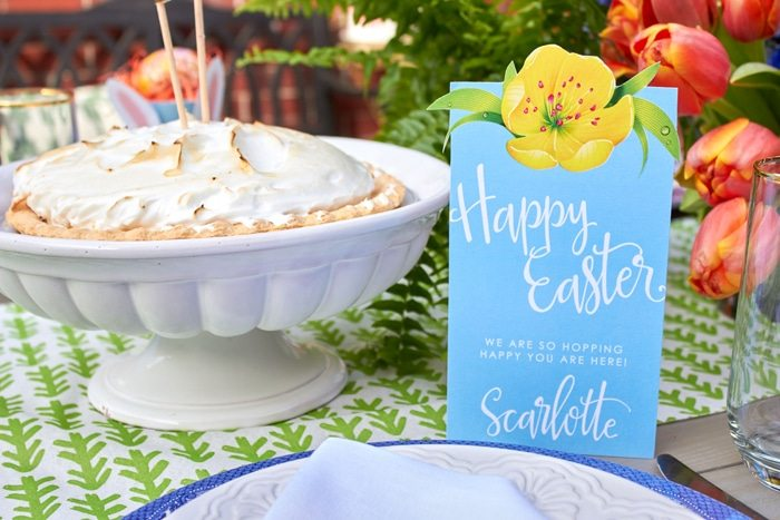 Host a Simply Southern Easter Dinner | DIY Video Tutorial | Easter Tablescape | Easter Party Ideas from AmysPartyIdeas.com