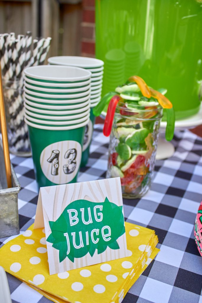 Printable party food labels for camping party, outdoor party, hammock party | ENO Hammock Party Ideas from AmysPartyIdeas.com | Birthday Party Ideas for Tweens, Teens | Hang Out Party Ideas | Camping party ideas, portable s'mores, bug juice, s'mores menu, printable party supplies